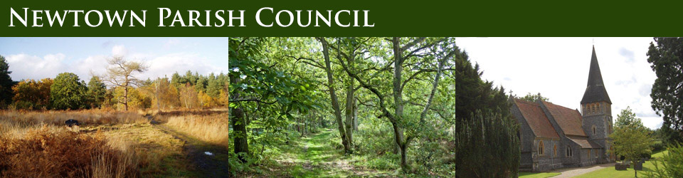 Header Image for Newtown Parish Council